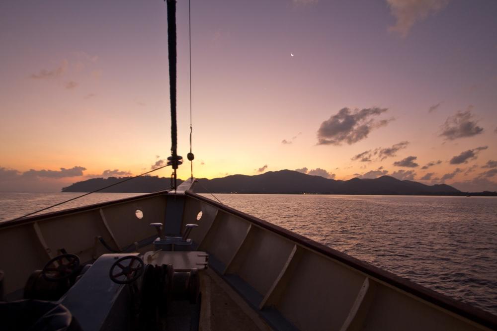 seychellen_cruise_seabird_impressionen_01