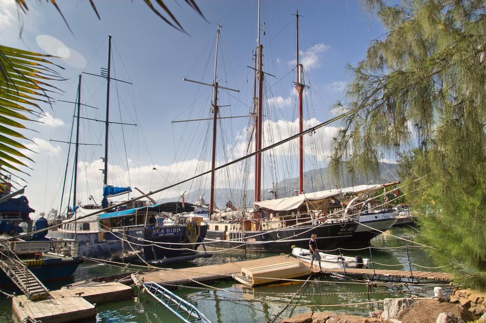 seychellen_mahe_flughafen_Port_victoria_seabird_silhouette_cruises_03