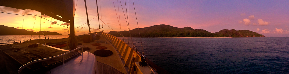 seychellen_aride_island_insel_vogel_naturschutz_strand_traumstrand_kreuzfahrt_silhouette_cruises_sea_bird_33