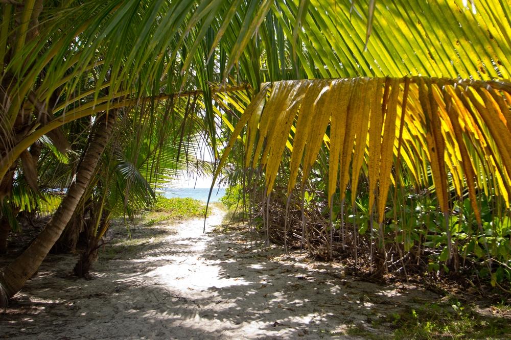 seychellen_coco_island_grande_soeur_sister_islands_schnorcheln_02