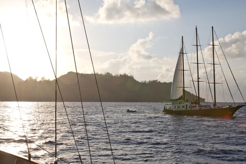 seychellen_curieuse_silhouette_cruises_sea_bird_schildkroeten_turtles_baie_laraie_anse_st_jose_20