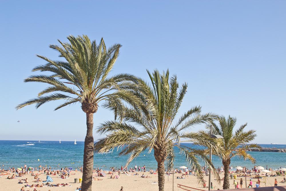 barcelona_strand_barceloneta_beach_06