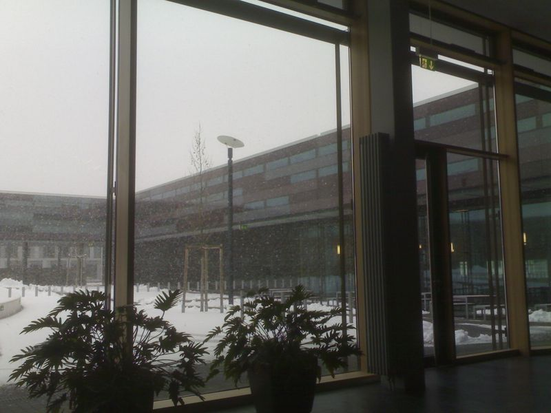 2008-11-24-schule-es-schneit-an-meinem-geb