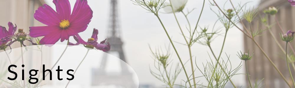 Paris Sehenswürdigkeiten Sights