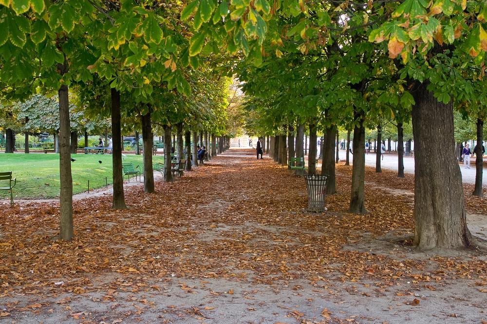 Paris_Parc-des-Buttes-Chaumont_Pere-Lachaise_20
