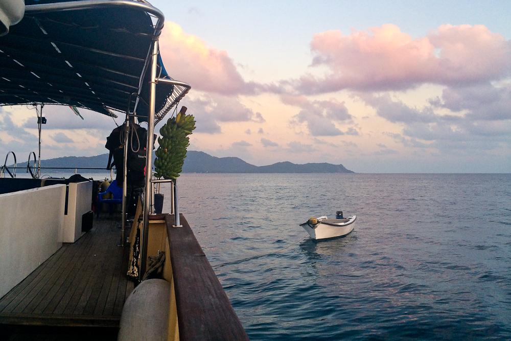 seychellen_mahe_flughafen_Port_victoria_seabird_silhouette_cruises_08