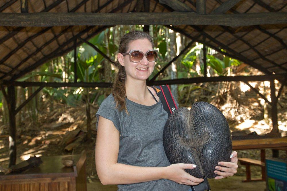 Seychellen_Praslin_Vallee-de-Mai_Coco-de-Mer_Black-Parrot_Cote-d-Or_13
