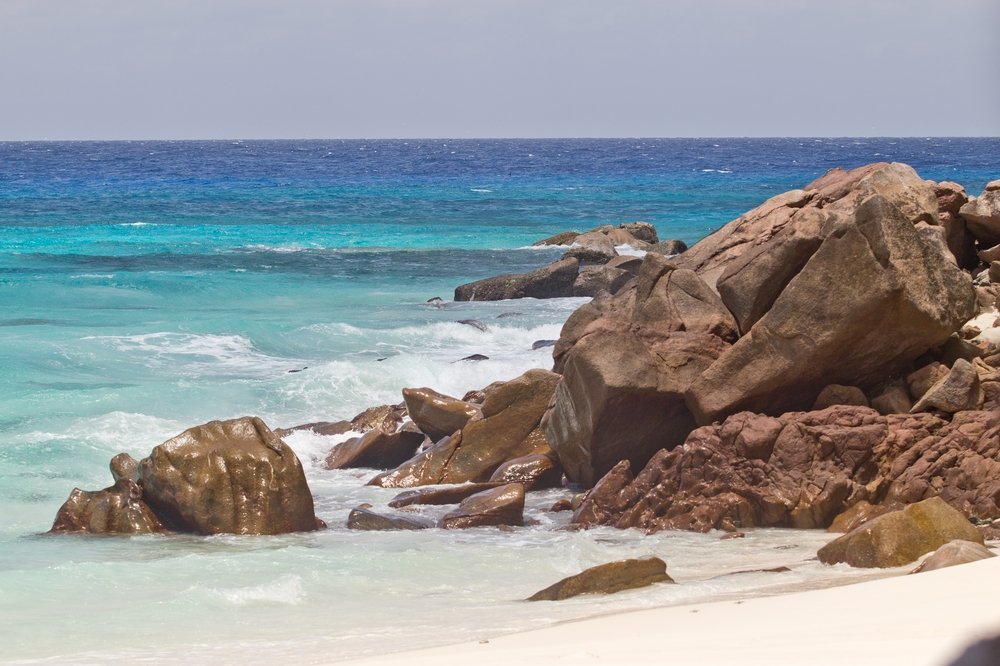 seychellen_aride_island_insel_vogel_naturschutz_strand_traumstrand_kreuzfahrt_silhouette_cruises_sea_bird_18