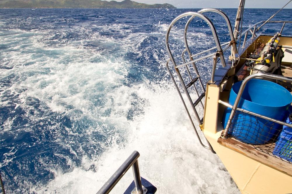 seychellen_aride_island_insel_vogel_naturschutz_strand_traumstrand_kreuzfahrt_silhouette_cruises_sea_bird_23