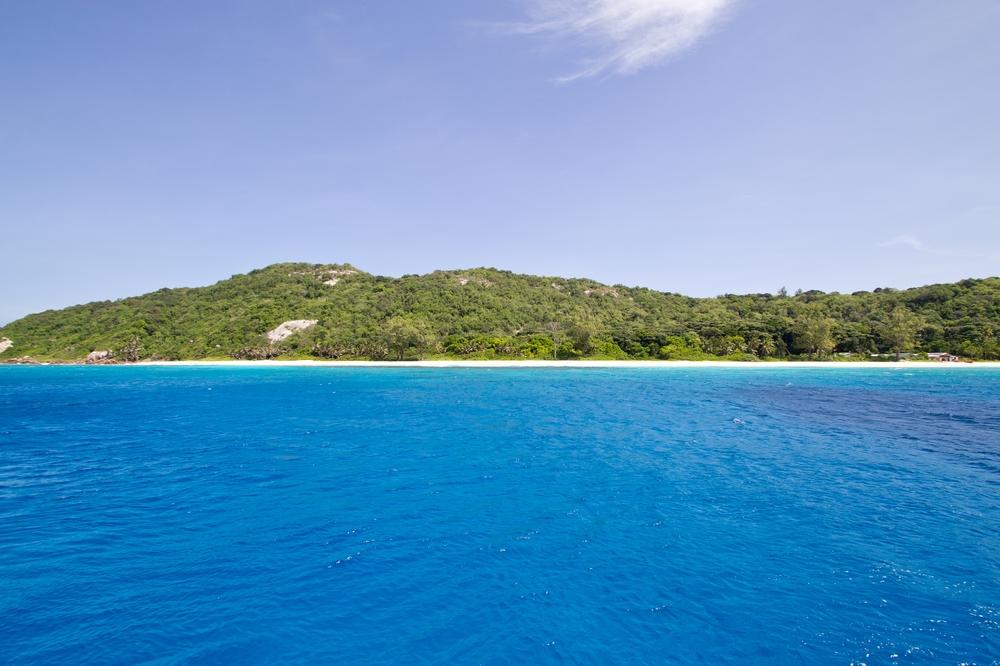 seychellen_aride_island_insel_vogel_naturschutz_strand_traumstrand_kreuzfahrt_silhouette_cruises_sea_bird_24