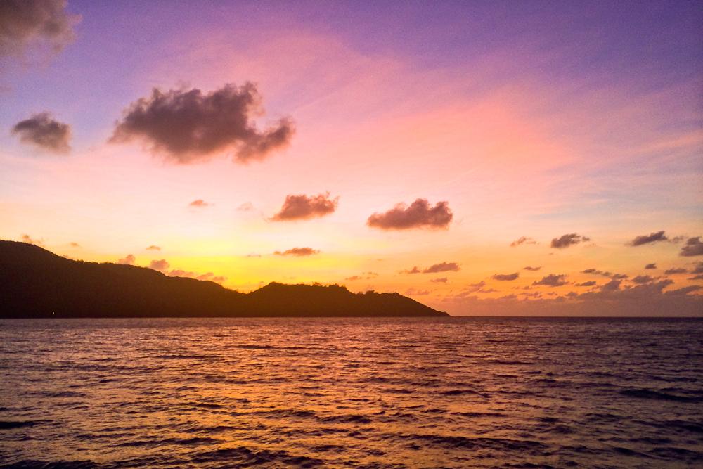 seychellen_aride_island_insel_vogel_naturschutz_strand_traumstrand_kreuzfahrt_silhouette_cruises_sea_bird_34