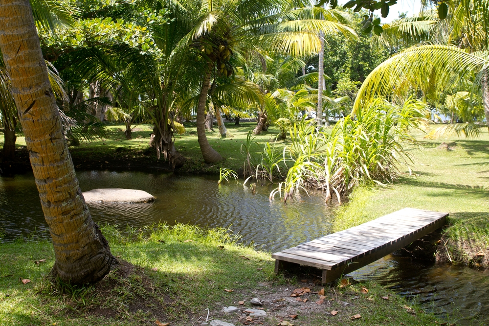 seychellen_coco_island_grande_soeur_sister_islands_schnorcheln_05