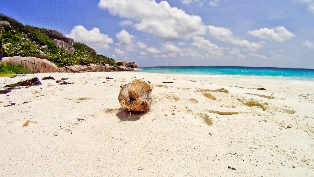 seychellen_coco_island_grande_soeur_sister_islands_schnorcheln_20