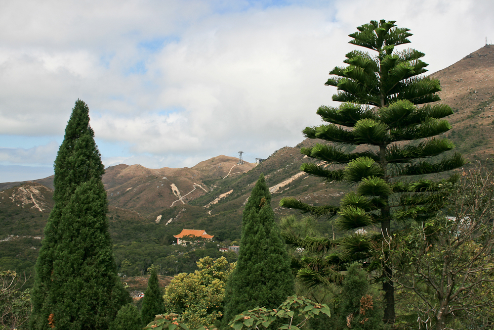 hongkong_china_blog_reiseblog_reisetagebuch_lantau_lamma_island_big_buddha_temple_10000_buddhas_avenue_stars_nan_lian_garden_07