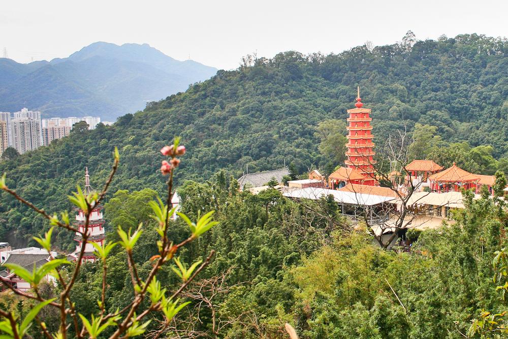 hongkong_china_blog_reiseblog_reisetagebuch_lantau_lamma_island_big_buddha_temple_10000_buddhas_avenue_stars_nan_lian_garden_19