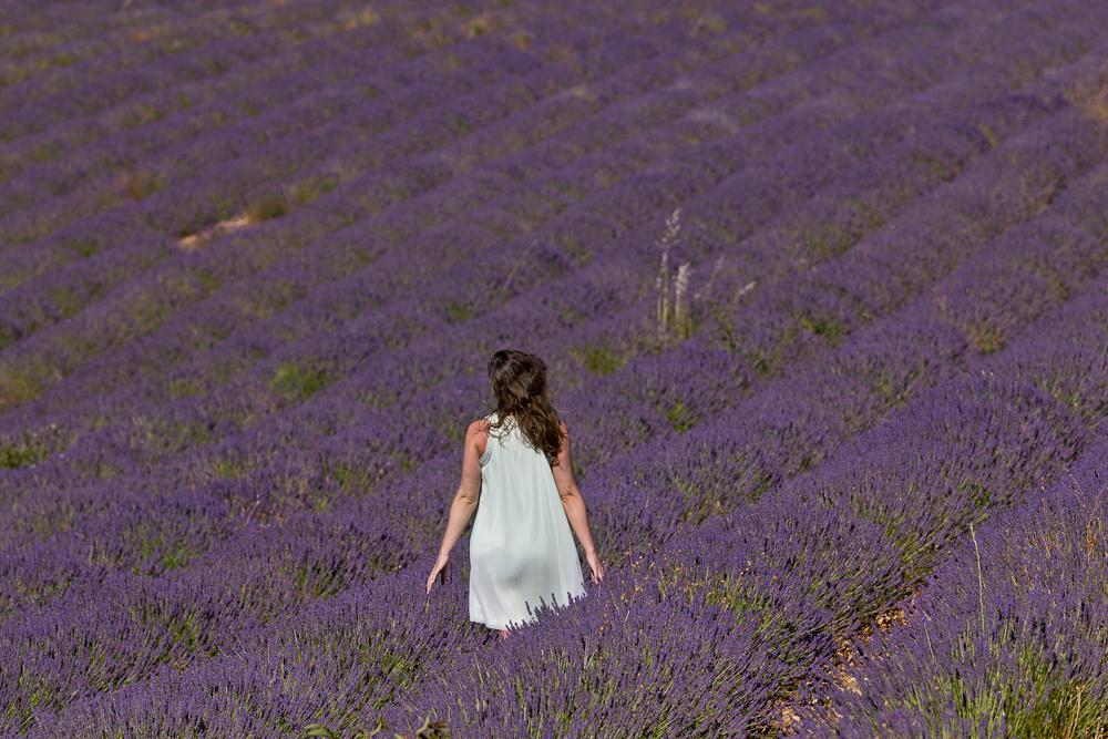provence_lavendel_feld_gordes_abbaye_de_senanque_06